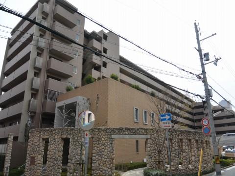 DSC_0761sinzaikekita_ks.jpg