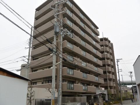 DSC_0768hamada_ks.jpg