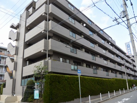 DSC_0903tokui_ks.jpg