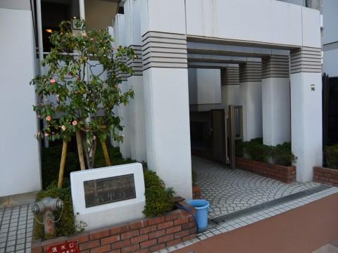 パークハイム六甲道(森後町)