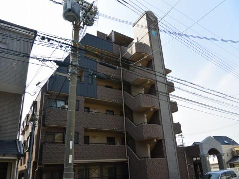 DSC_1166sinoharaminami_ks.jpg