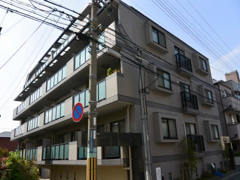 DSC_1168sinoharaminami_ks.jpg