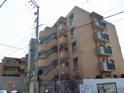 DSC_1181sinoharahonmati_ks.jpg