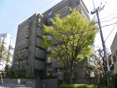 DSC_1190miyayama_ks.jpg