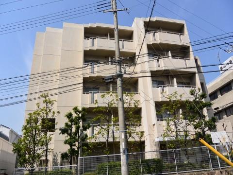 DSC_1193sinoharanakamati_ks.jpg